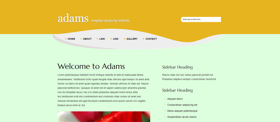 Web Template - Adams