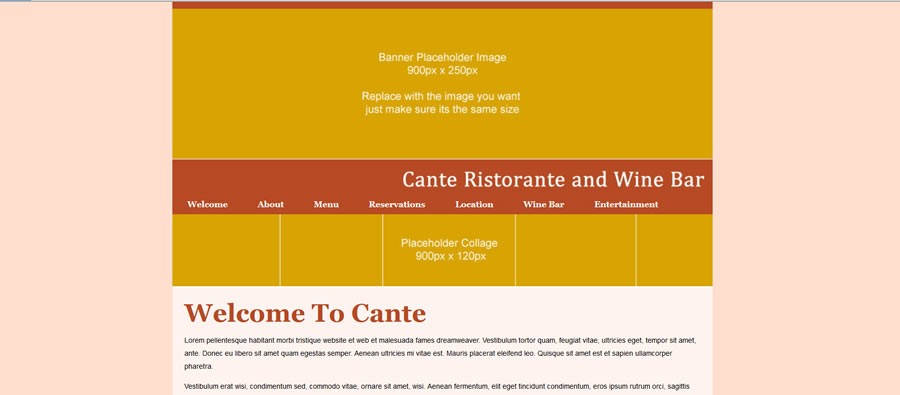 Web Template - Cante