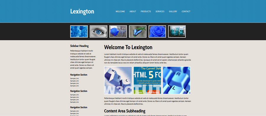 Web Template - Lexington