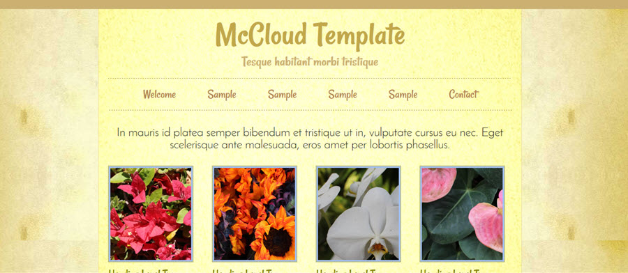 Web Template - Mccloud