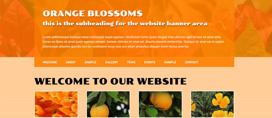 Orange Blossoms - Web Template