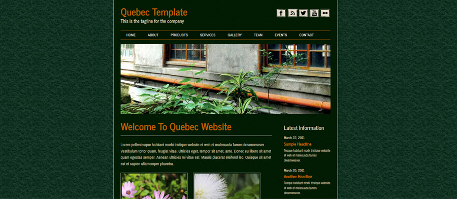 Web Template - Quebec