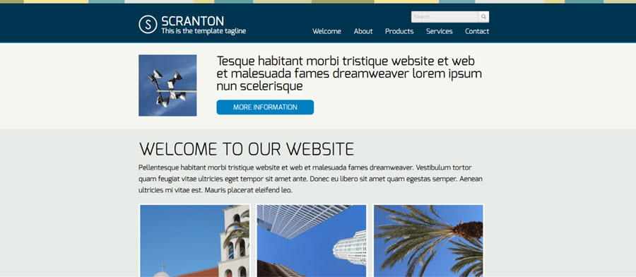 Scranton Website Template
